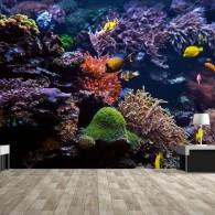 HP PVC Free Wallpaper-Undersea (2)
